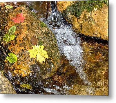 Fall Colors 6389 Metal Print by En-Chuen Soo