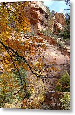 Fall Colors 6497 Metal Print by En-Chuen Soo