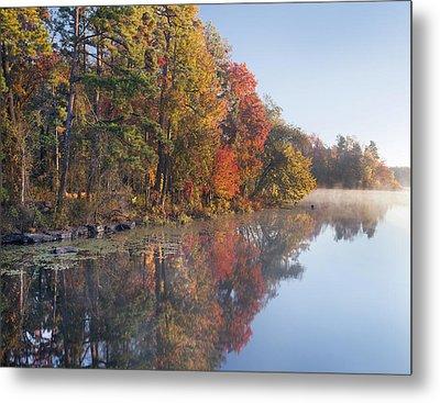Fall Colors Along Lake Bailee In Petit Metal Print by Tim Fitzharris