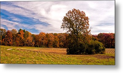 Fall Colors At Poets Walk Park Metal Print