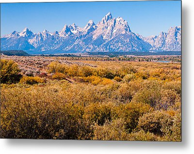 Metal Print featuring the photograph Fall Colors In The Tetons   by Lars Lentz