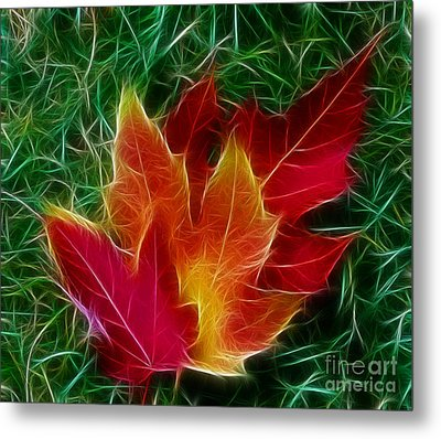 Fall Colors Metal Print by JRP Photography