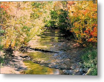 Fall Colors Metal Print by Kathleen Struckle