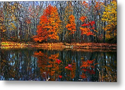 Fall Colors On Small Pond Metal Print