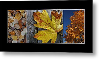 Fall Colors Triptych Metal Print