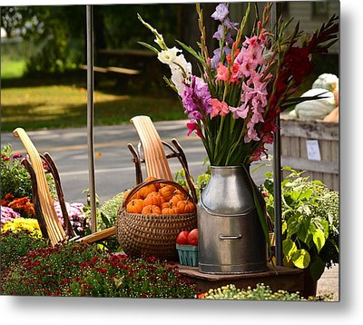 Fall Country   Metal Print by Judy Genovese