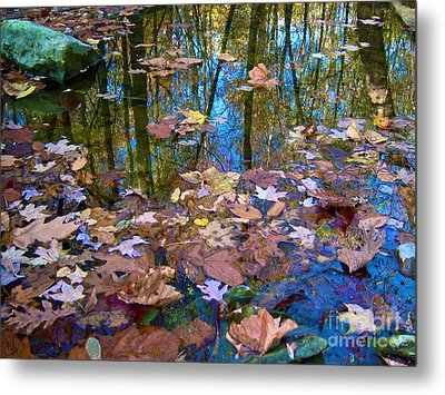 Fall Creek Metal Print by Pamela Clements