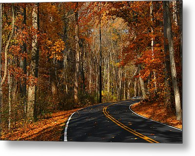 Metal Print featuring the photograph Fall Curves by Andy Lawless