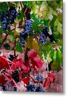 Fall Delight I Metal Print by Ken Evans