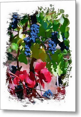 Fall Delight II Metal Print by Ken Evans