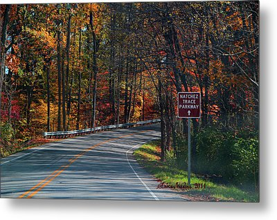 Fall Drive In Tennessee  1 Metal Print by EricaMaxine  Price