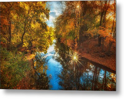 Fall Filtered Reflections Metal Print