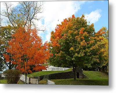 Metal Print featuring the photograph Fall Foliage Colors 09 by Metro DC Photography