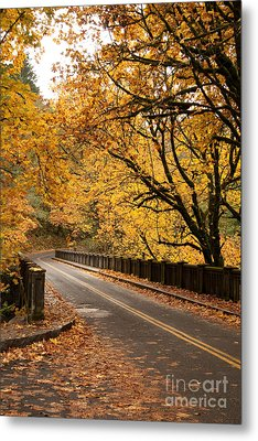 Fall Foliage On The Highway Metal Print by Cari Gesch