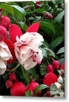 Fall Fuchsia Metal Print