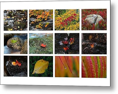 Fall Greetings Metal Print by Juergen Roth