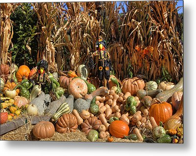 Fall Harvest Metal Print by Joann Vitali