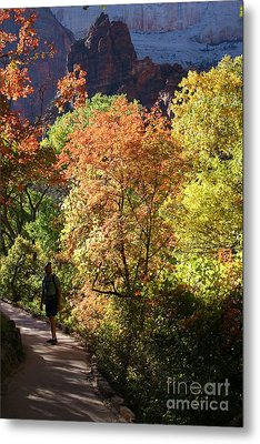 Fall Hiking At Zion National Park Metal Print by Mary Lou Chmura