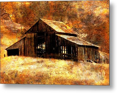 Fall In Country Metal Print