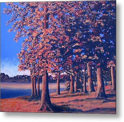 Fall In East Texas Metal Print