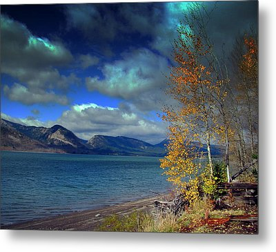 Metal Print featuring the photograph Fall In Jackson Lake by Irina Hays