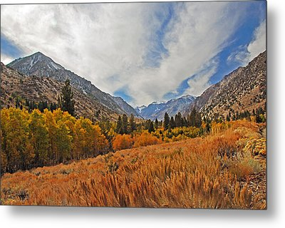 Fall In Lundy Canyon Metal Print by Lynn Bauer