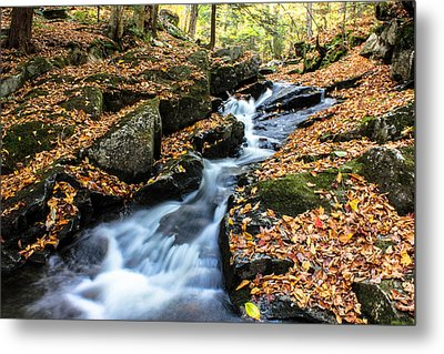 Fall In The Adirondacks Metal Print
