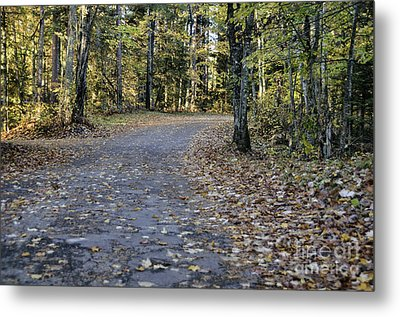 Fall In The North Woods Metal Print by Birgit Tyrrell