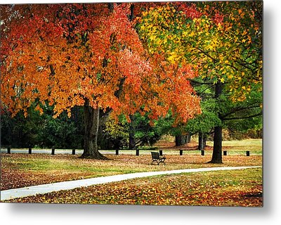 Fall In The Park Metal Print by Christina Rollo