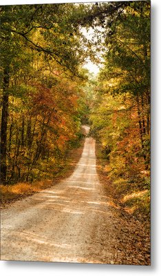 Fall Into Autumn Metal Print by Mary Timman