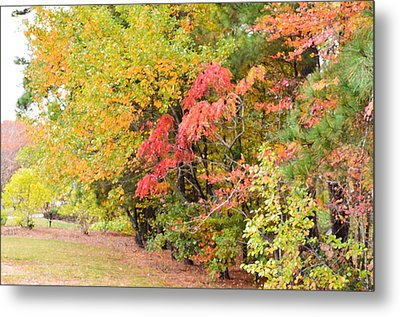 Fall Landscape 3 Metal Print by Lanjee Chee