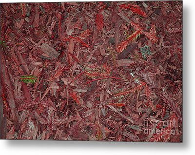 Metal Print featuring the photograph Fall Leaves by Mini Arora