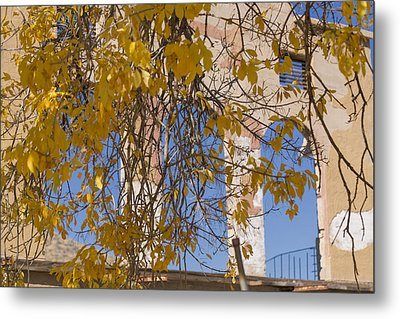 Fall Leaves On Open Windows Jerome Metal Print by Scott Campbell