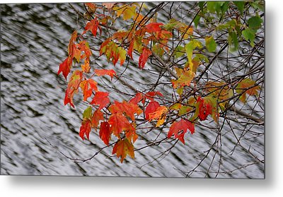Fall Leaves Over The Lake Metal Print