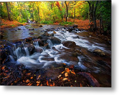 Metal Print featuring the photograph Fall On Fountain Creek by Ronda Kimbrow