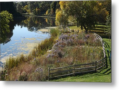 Fall On The Pond Metal Print