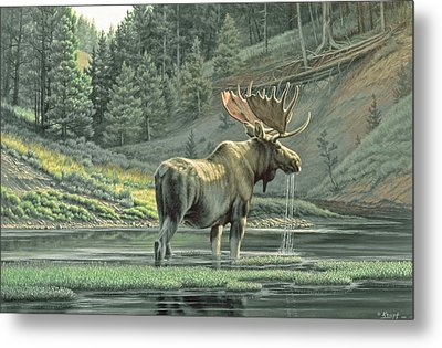 Fall On The Yellowstone Metal Print