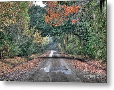 Fall On Witsell Rd. Metal Print by Scott Hansen