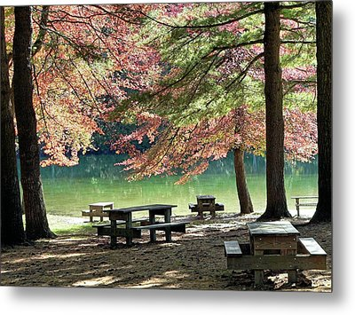 Metal Print featuring the photograph Fall Picnic by Janice Drew