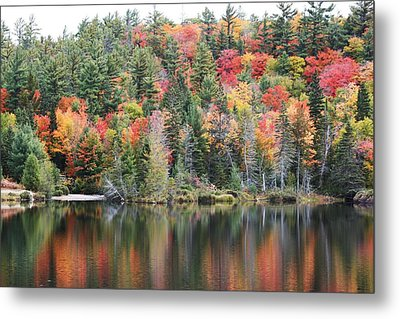 Metal Print featuring the photograph Fall Reflection by Paula Brown
