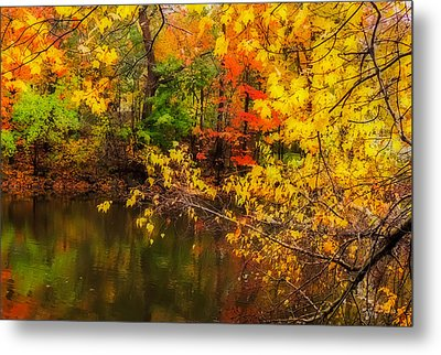 Fall Reflection Metal Print by Robert Mitchell