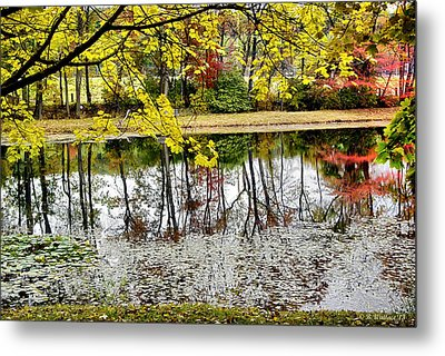 Fall Reflections Metal Print by Brian Wallace