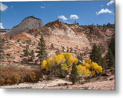 Metal Print featuring the photograph Fall Season At Zion National Park by John M Bailey