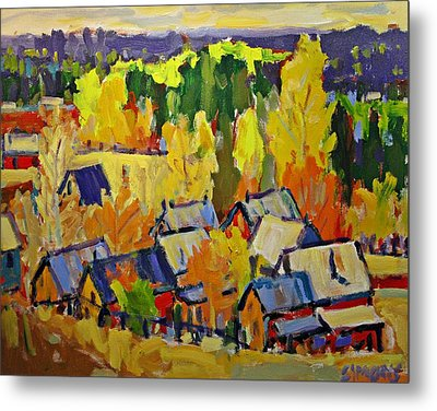 Fall Sheds Metal Print by Brian Simons