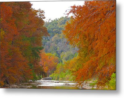 Fall Spectacular Metal Print by David  Norman