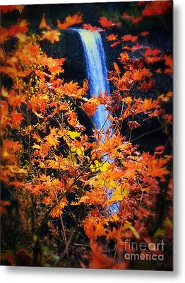 Fall Splendor Metal Print