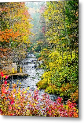 Fall Stream In New Hampshire Metal Print