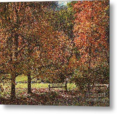 Fall Trees Metal Print by Nicholas Burningham