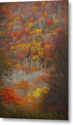 Fall Tunnel Metal Print by Raymond Salani III