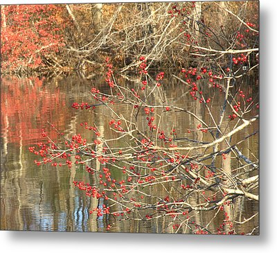 Fall Upon The Water Metal Print by Bruce Carpenter